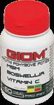 GIOM Akutní pohybové potíže 60 tablet